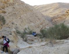 2014 - Lab Trip to Wadi Hatzatz and Wadi Daroch picture no. 92