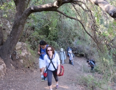 2014 - Lab Trip to Nahal Amud and Rappelling in the Black Canyon (2 days) picture no. 9