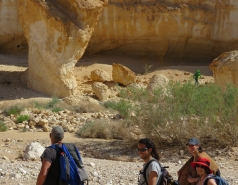2015 - Lab Trip to Eastern Ramon Crater (2 days) picture no. 24