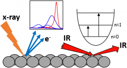 Fundamental catalysis - following surface reactions