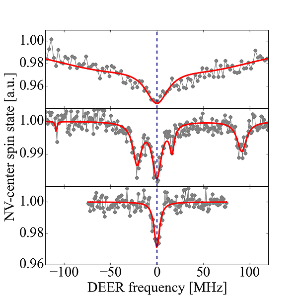 electron spin resonance of spin labels (top and middle) and dangling bond electron spins measured by the nitrogen-vacancy center in diamond using the double-electron-electron-resonance protocol