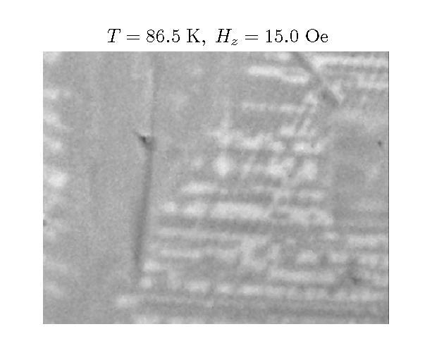 T = 86.5 K, H<sub>z</sub> = 15.0 Oe