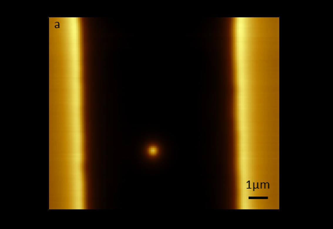 Single vortex pinning