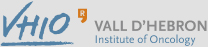 VHIO, Vall D'hebron Institute of Oncology, Opens in a new window