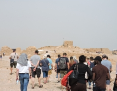 Dead Sea Tour picture no. 26