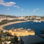 EMBO Conference - Spain September 2017 picture no. 28