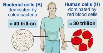 Bacteria vs Human cells
