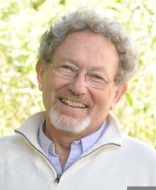Prof. Amos Breskin