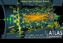 Charged hadron distributions