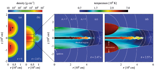 A New Model for Stellar Explosions