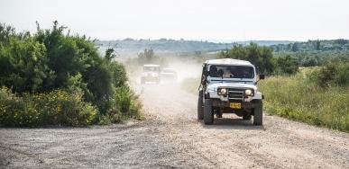 Retreat 2016 - Hacienda Forest picture no. 4