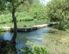 Banyas - May 2010 picture no. 2