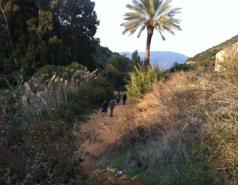 Lachish - December 2012 picture no. 2