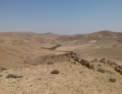 Wild Almond Exploration in the Negev