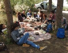 Tree Lab Trip