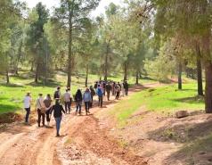EvolTree workshop in Yatir forest